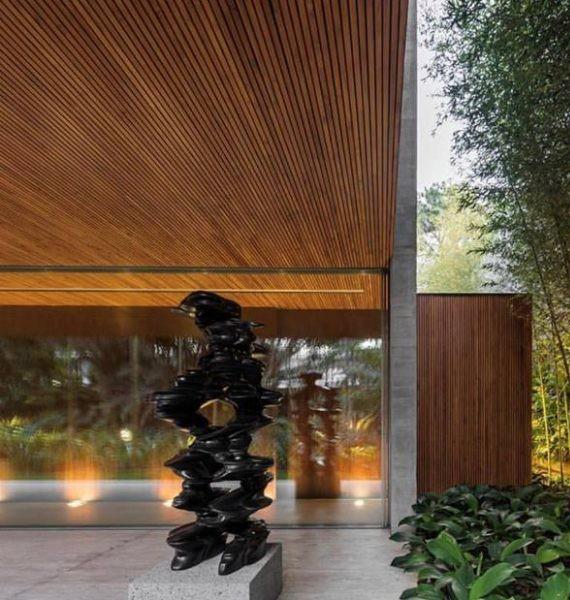 bambu_jardim-800x600